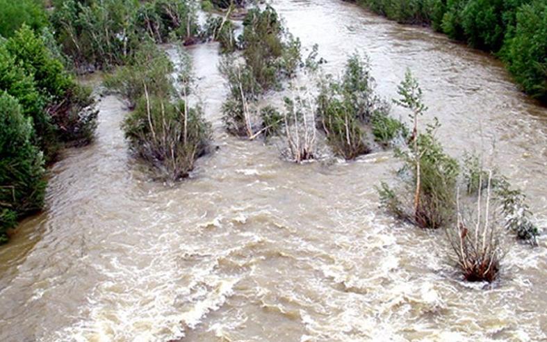 Source de la photo  : Ille-sur-Têt, Pyrénées Orientales (66), Fran - 2002 - Gérard Chapron